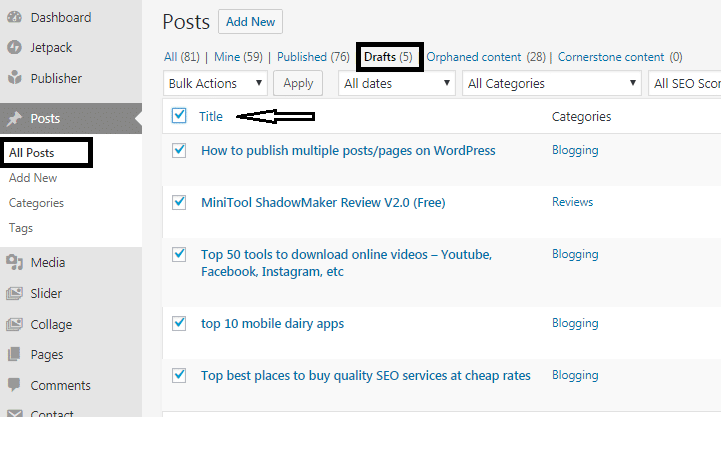 How to publish multiple posts/pages on WordPress